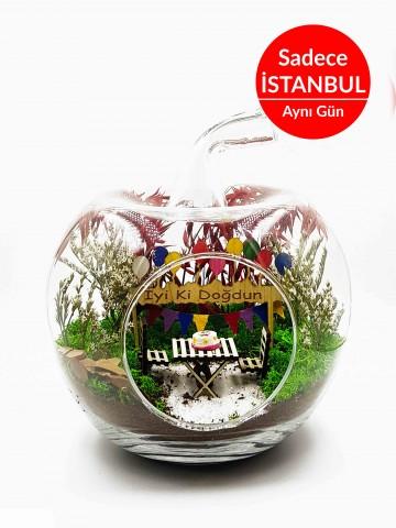 İyi ki Doğdun Yapay Teraryum Terarium çiçek gönder