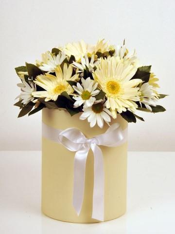 Gerberalar ve Krizantemler Kutuda Çiçek çiçek gönder