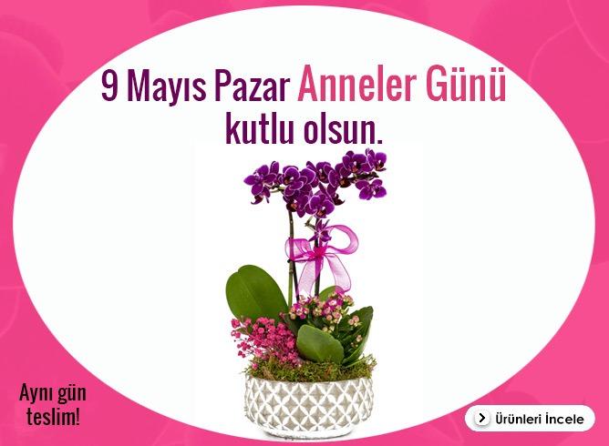 9 Mayıs Pazar Anneler Günü Çiçekleri