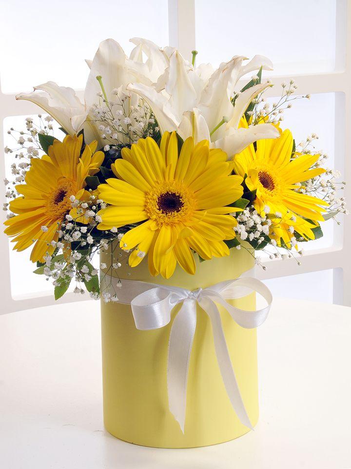 Sarı Silindir Kutuda Beyaz Lilyum ve Sarı Gerberalar. Kutuda Çiçek çiçek gönder