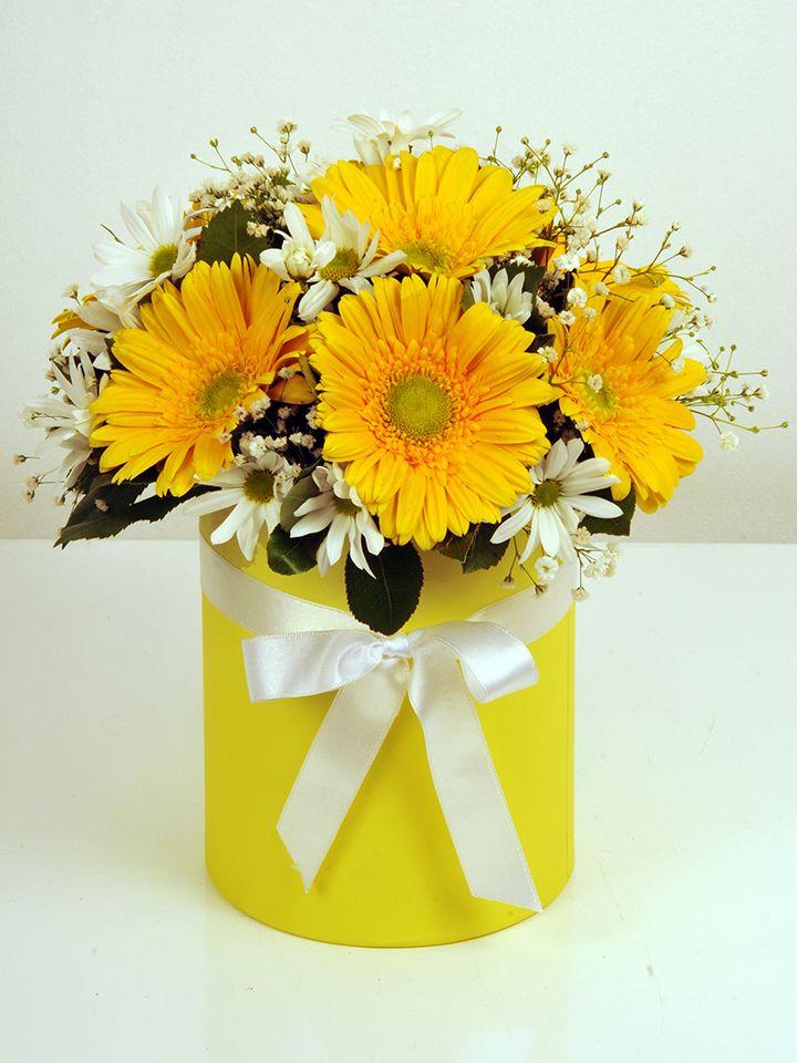 Sarı Silindir Kutuda Alman Papatyaları. Kutuda Çiçek çiçek gönder