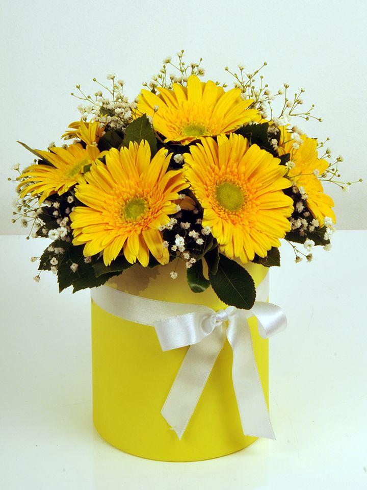 Alman Papatyam Kutuda Aranjmanlar çiçek gönder