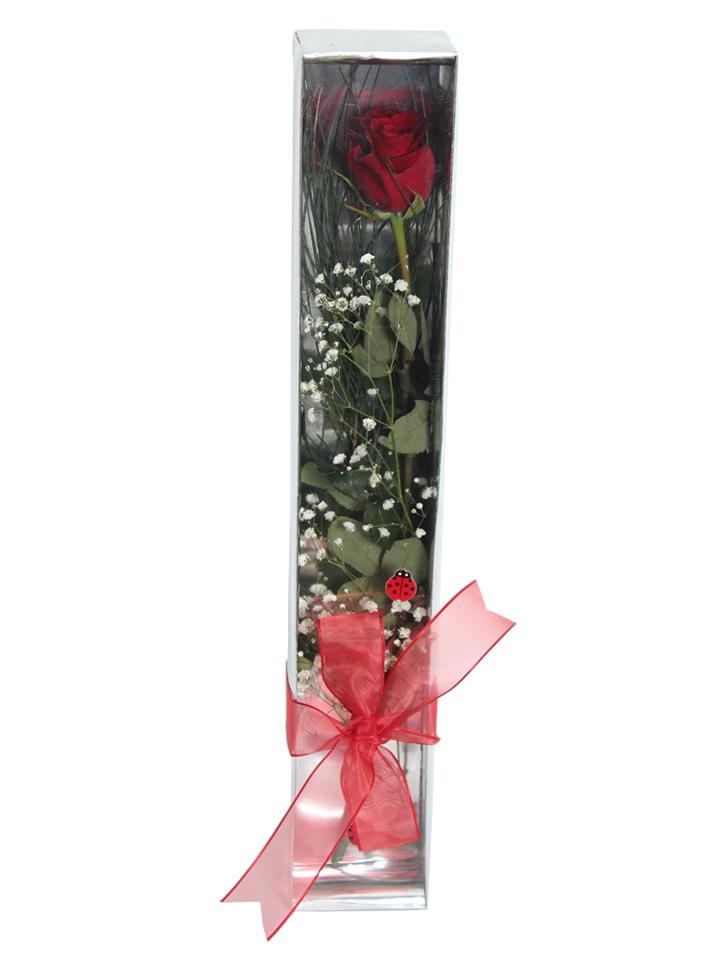 Kutuda Tek Gül Aranjmanlar çiçek gönder
