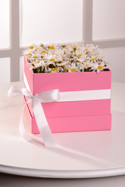 Papatyaların Gizemi  çiçek gönder