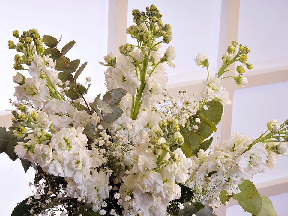Cam Vazoda 9 Adet Mis Kokulu Şebboylar Aranjmanlar çiçek gönder