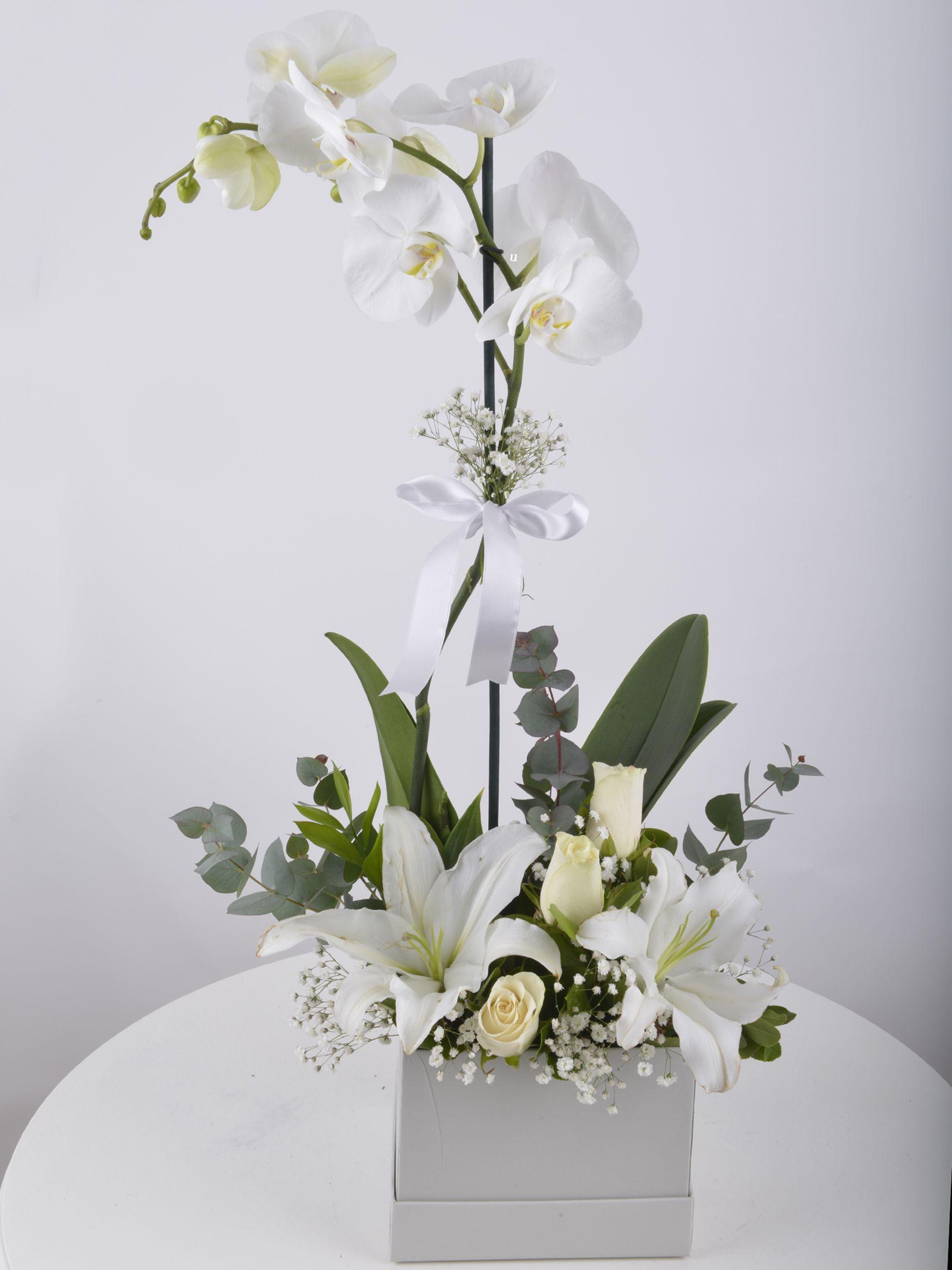 Tek Dallı Beyaz Orkide Çiçeği..  çiçek gönder