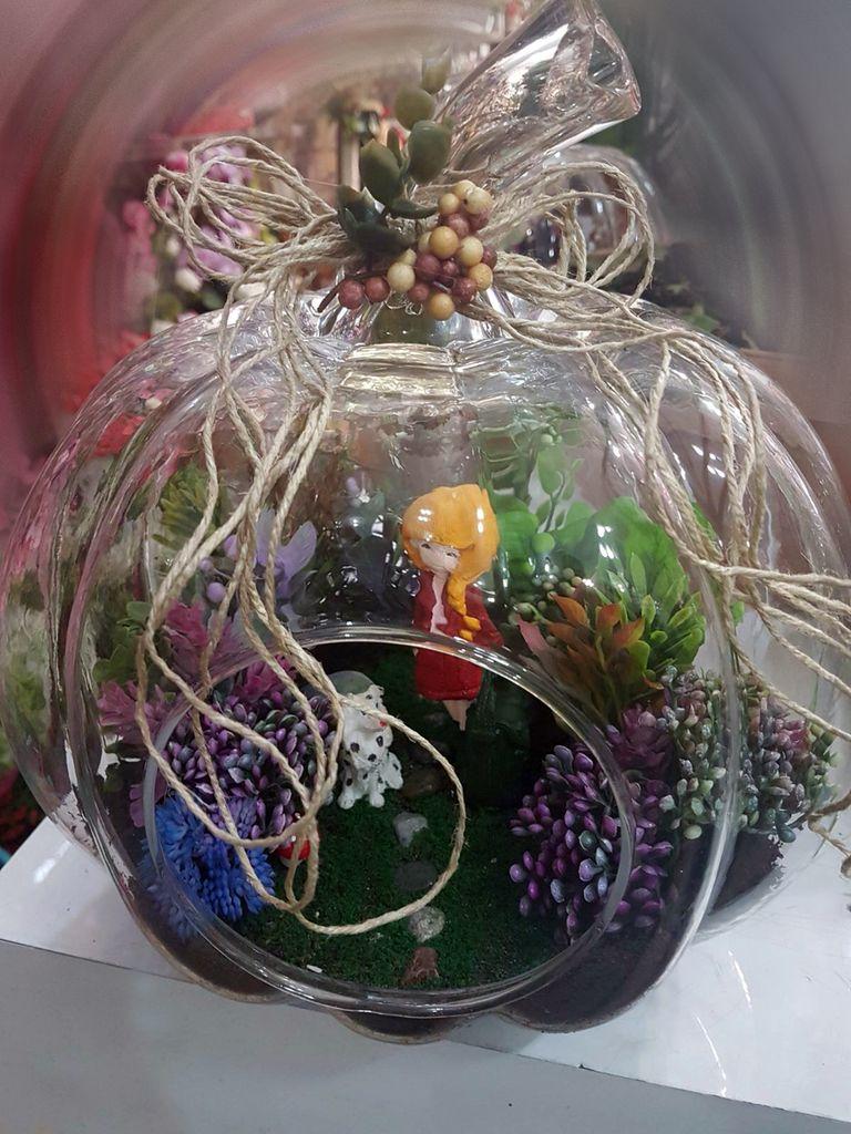 Kabak Yapay Terrarium 3 Terarium çiçek gönder