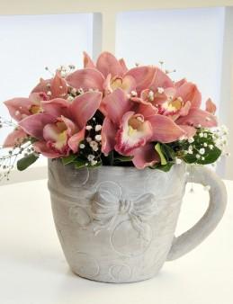 Fincan da Orkide Arajmanı.  çiçek gönder