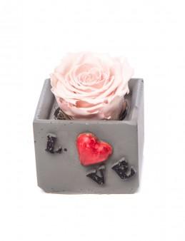 Lover Serisi Pembe Renk Şoklanmış Gül Tasarım  çiçek gönder