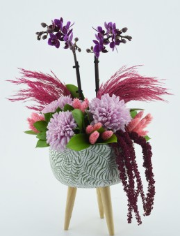 Mini Orkideli Çiçek Tasarımı  çiçek gönder
