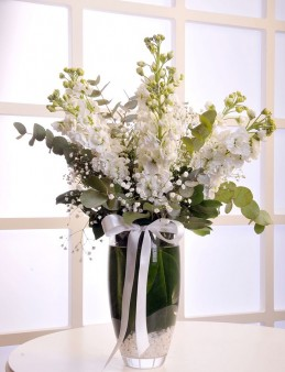 Cam Vazoda 9 Adet Mis Kokulu Şebboylar  çiçek gönder