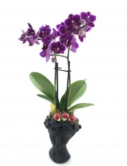 Helen Vazoda İki Dal Mor Orkide  çiçek gönder