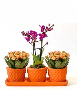 Muhteşem 3'lü Set  çiçek gönder