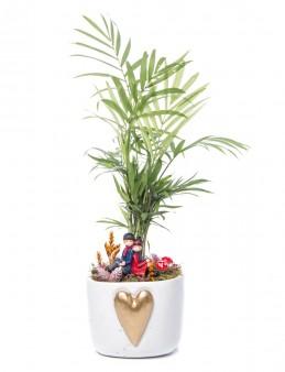 Cuore Serisi Chamadora Tasarım  çiçek gönder
