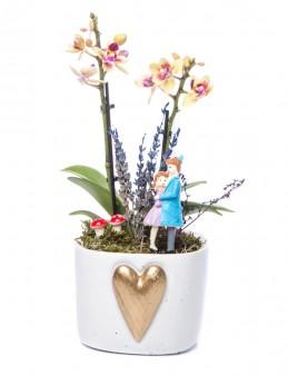 Cuore Serisi Sarı Orkide Tasarım  çiçek gönder