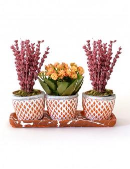 Özel Tasarım Lavanta ve Kalanchoe Bitkisi  çiçek gönder