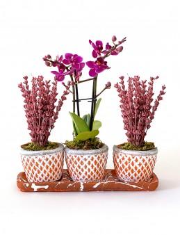 Lavanta ve Orkidenin Eşsiz Güzelliği  çiçek gönder