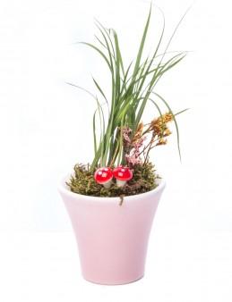 Moster Serisi Carex Tasarım  çiçek gönder