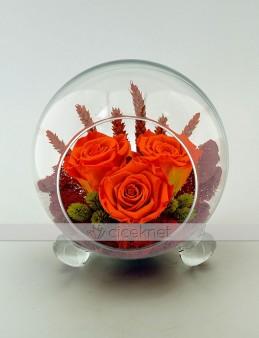 Cam Kürede Turuncu Solmayan Güller  çiçek gönder
