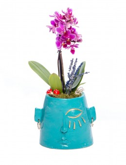 Arati Serisi Mini Mor Orkide Tasarım  çiçek gönder
