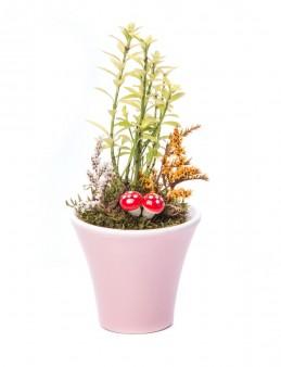 Moster Serisi Buxus Bonsai Tasarım  çiçek gönder