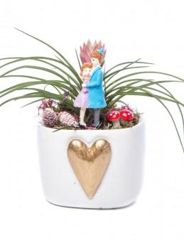 Cuore Serisi Tillendsia Tasarım  çiçek gönder