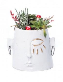 Arati Serisi Sukulent Tasarım  çiçek gönder