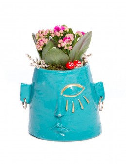 Arati Serisi Kalanchoe Tasarım  çiçek gönder