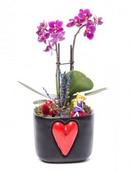 Cuore Serisi Kişiye Özel Mini Mor Orkide Tasarım  çiçek gönder
