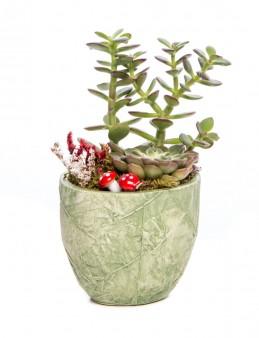 Herba Serisi Para Çiçeği Tasarım  çiçek gönder
