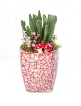 Mosaic Serisi Para Çiçeği Tasarım  çiçek gönder