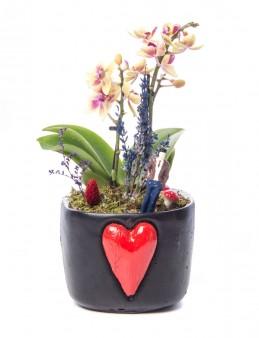 Cuore Serisi Mini Sarı Orkide Tasarım  çiçek gönder