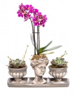 Antik Kupa Serisi Orkide Tasarım  çiçek gönder