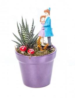Opal Serisi Howarthia Tasarım  çiçek gönder