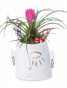 Arati Serisi Tillendsia Tasarım  çiçek gönder