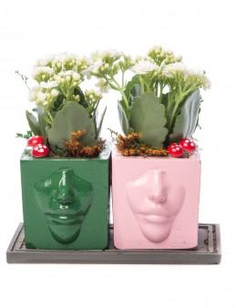Katena Serisi Kalanchoe Tasarım  çiçek gönder