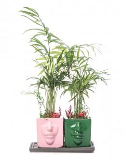Katena Serisi Chamadora Tasarım  çiçek gönder