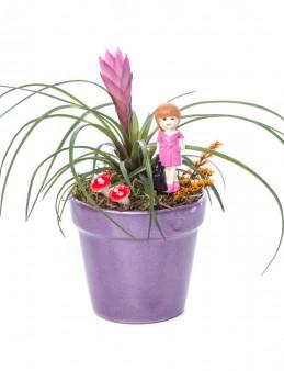 Opal Serisi Tillendsia Tasarım  çiçek gönder