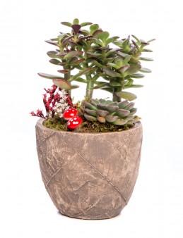 Wood Herba Serisi Para Çiçeği Tasarım  çiçek gönder