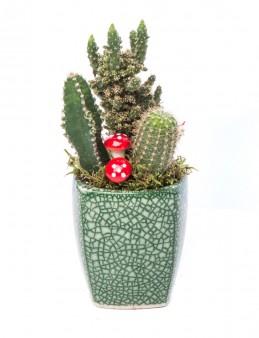 Mosaic Serisi Kaktüs Tasarım  çiçek gönder
