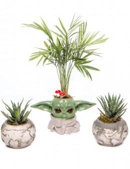 Trio Yoda Dünya Serisi Chamadora Tasarım  çiçek gönder