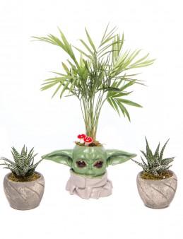 Trio Yoda Serisi Chamadora Tasarım  çiçek gönder