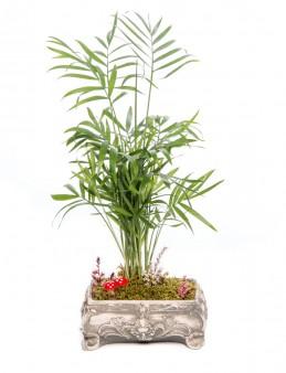 Ahiri Serisi Chamadora Tasarım  çiçek gönder