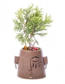 Arati Serisi Mazı Bonsai Tasarım  çiçek gönder