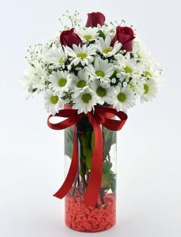 Naifliğin Simgesi Papatya ve Güller  çiçek gönder