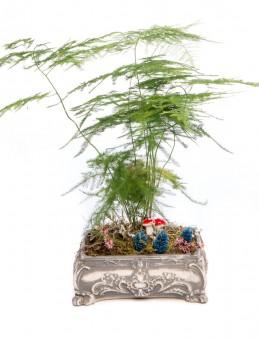 Ahiri Serisi Asparagus Tasarım  çiçek gönder