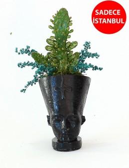 Nefertiti Kaktüs Terarium çiçek gönder