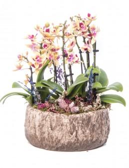 Ratran Serisi Sarı Orkide Tasarım  çiçek gönder