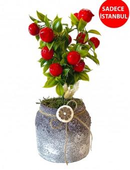 Aşkın Meyveleri Yapay Ağaç Saksı Çiçekleri çiçek gönder
