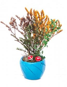 Softy Serisi Kuru Çiçek Tasarım  çiçek gönder